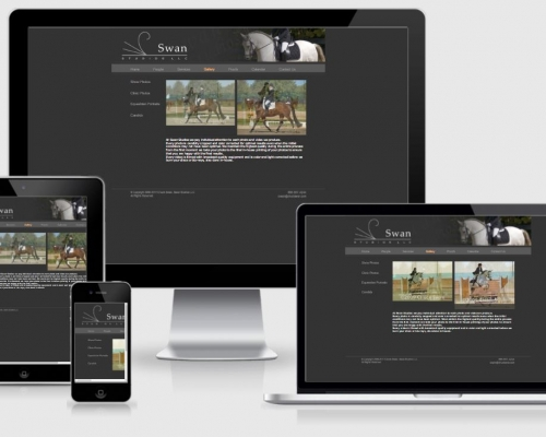 Swan Studios Website
